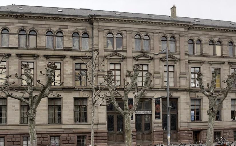 Les lieux touristiques d'Alsace – Musée Zoologique