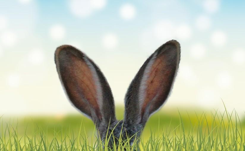 Week-end de Pâques en Alsace : 3 activités à faire en famille !