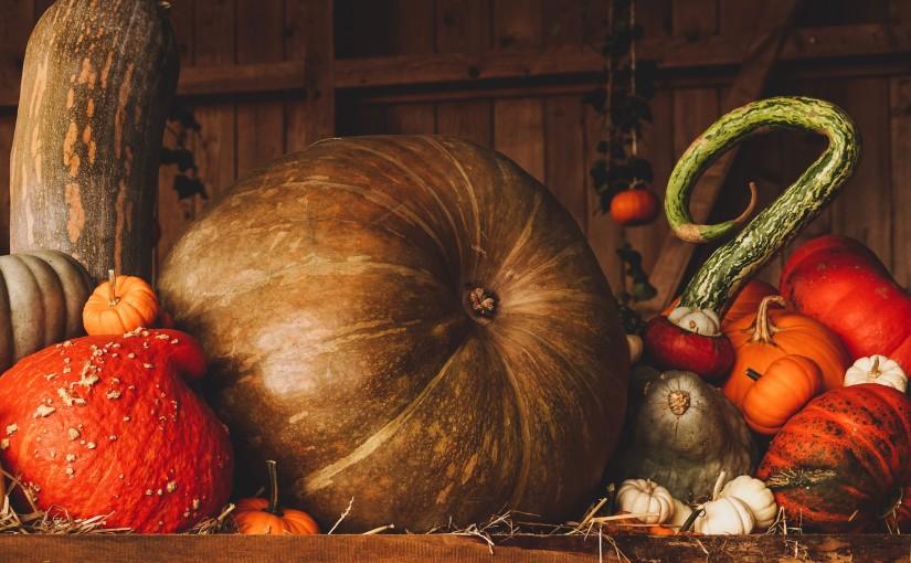 Halloween en Alsace 2018 : notre top 5 des activités à faire !