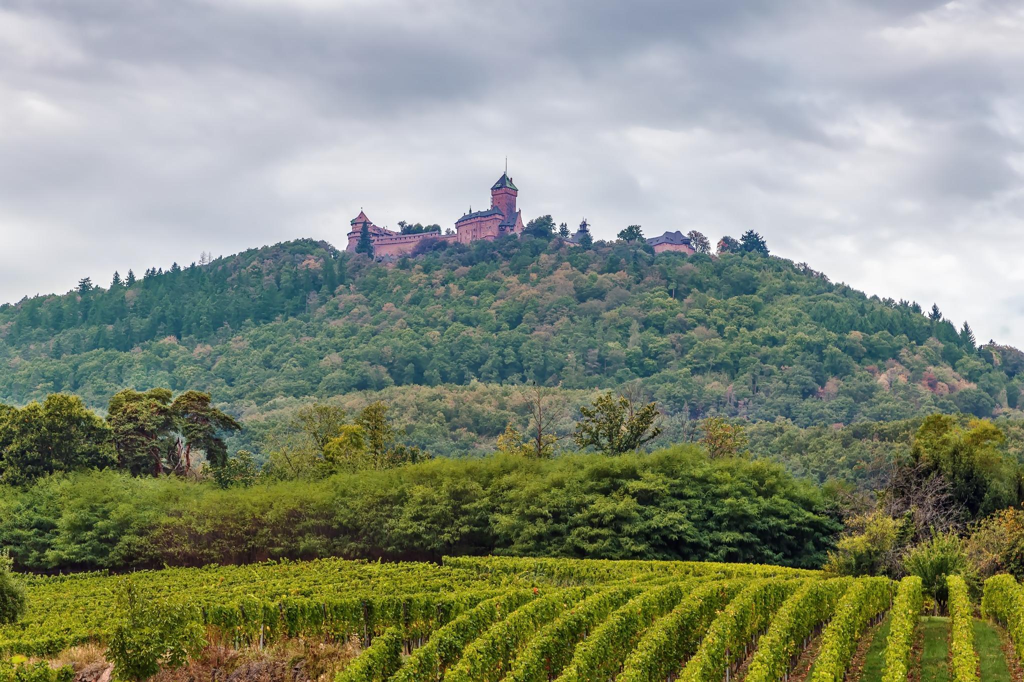 Château du Haut-Koenigsbourg Alsace
